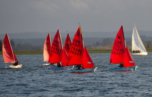 Fleet of Mirror dinghies sailing on Queen Mary Reservoir on a grey day