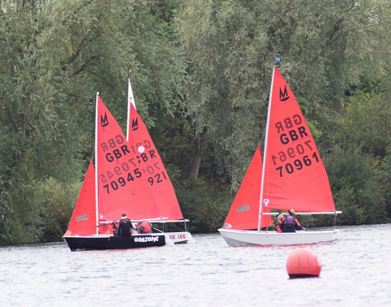 Mirror dinghies racing upwind on a lake with trees in the background